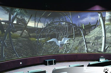 4 D projection screen